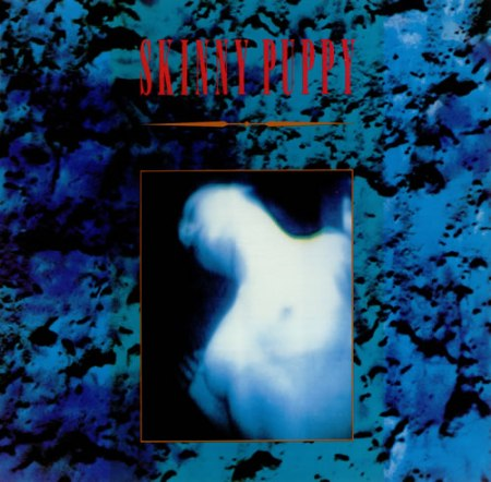 Skinny+Puppy+-+Mind +The+Perpetual+Intercourse+-+LP+RECORD-440571