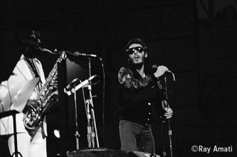 Bruce Springsteen & the E Street Band perform in Central Park in NYC. They were a last minute replcement as the opening band for Anne Murray. Photo: Copyright Ray Amati