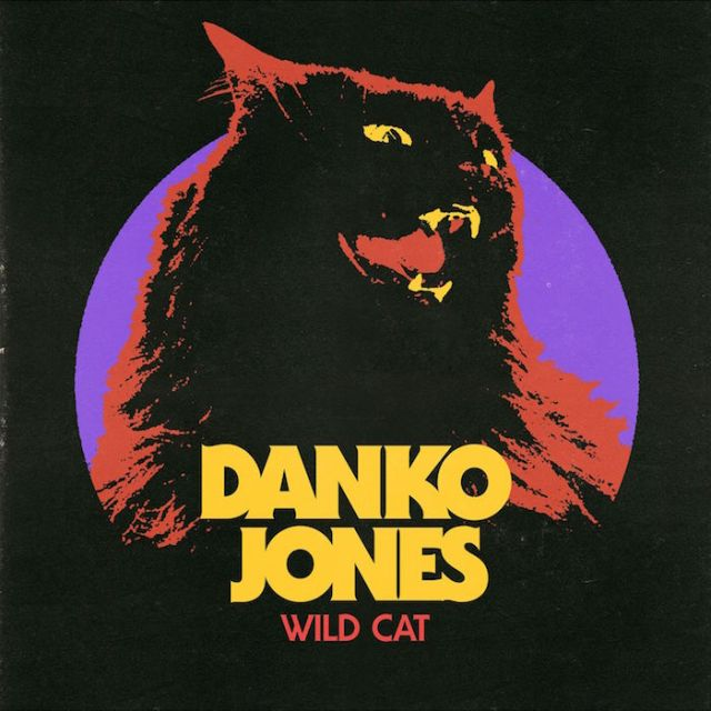 dankoj-cover-art